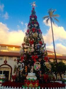hawaii x'mas tree (2)